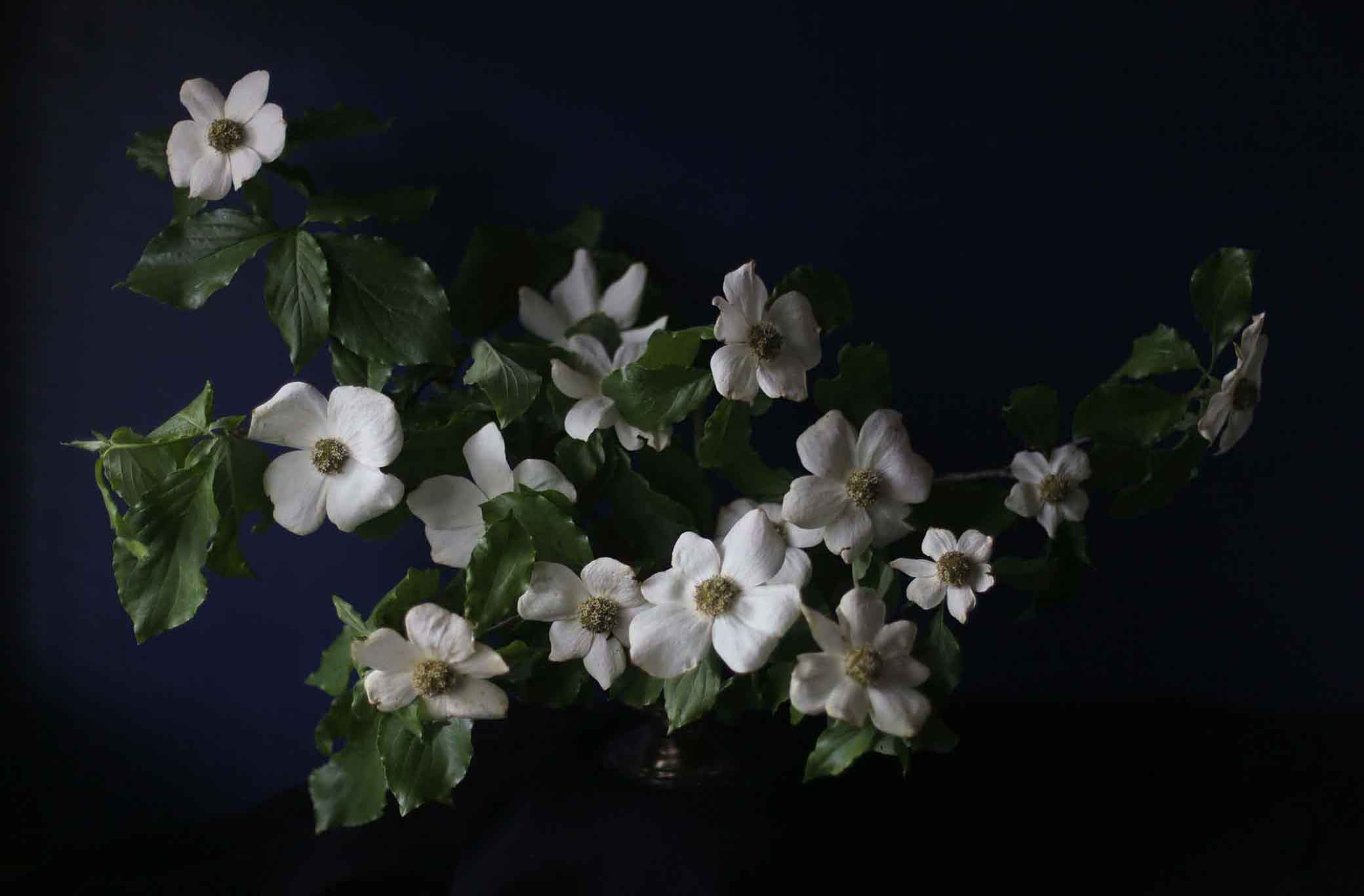 a-native-bloom-portland-oregon-wedding-flowers-6