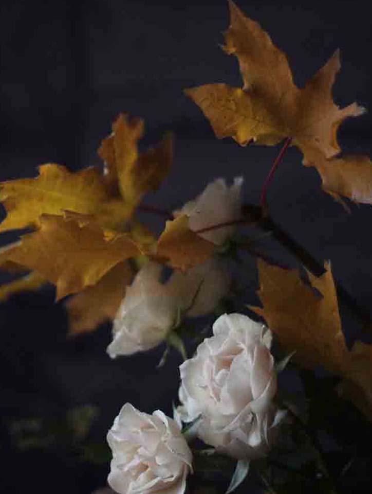 fall main